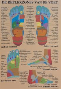 Reflexzones voet
